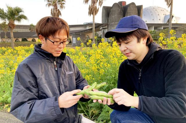 【わかたけ】上撰 越冬空豆