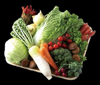 【わかたけ】季節の野菜セット