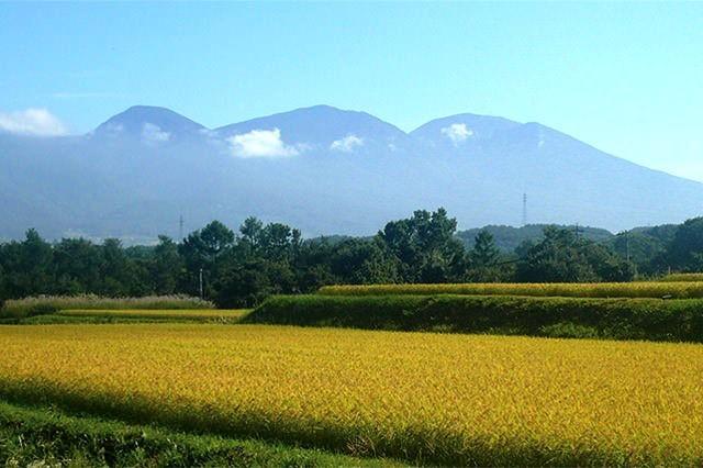 【やまぶき】信州の美味しいお米 三べぇや 特別栽培米