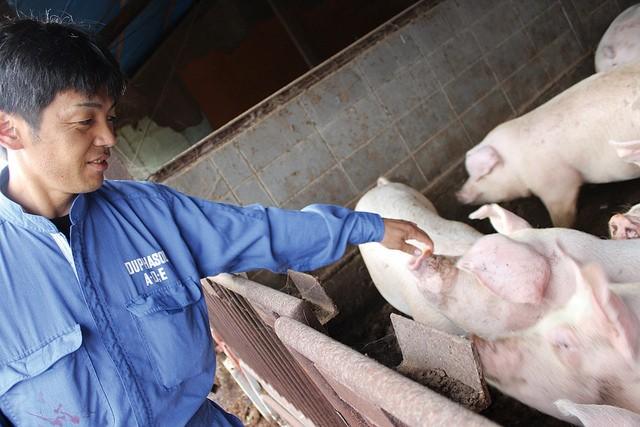 信州産くりん豚セット