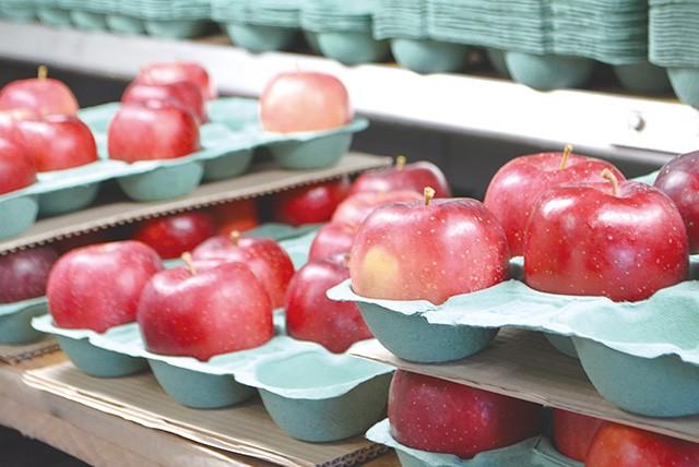 【やまぶき】羽山高原りんごジュースセット